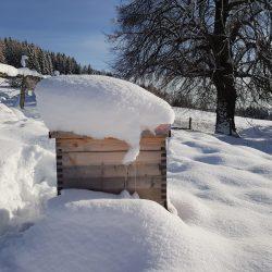Bienenstock im Winter, Elisabeth Pfeifhofer
